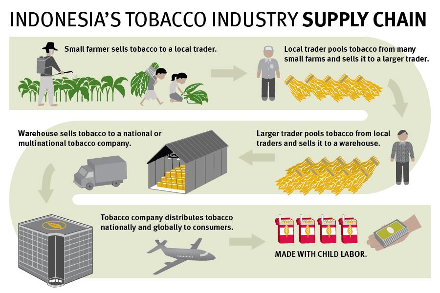 indonesia-supply-chain-graphic