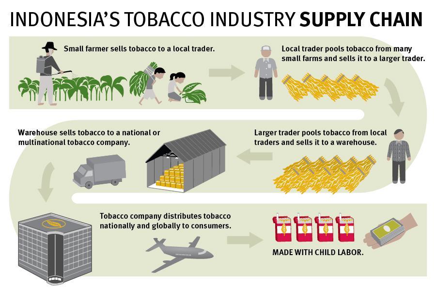 indonesia-supply-chain-graphic