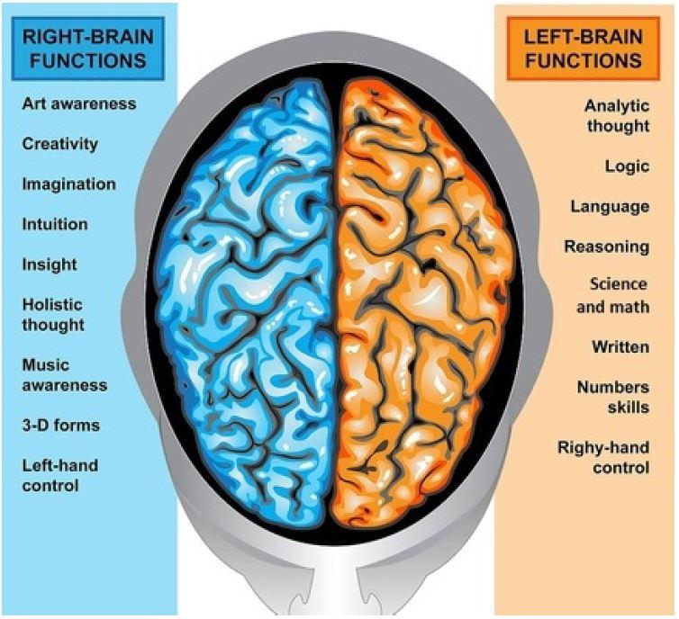 right-left-smoking-brain